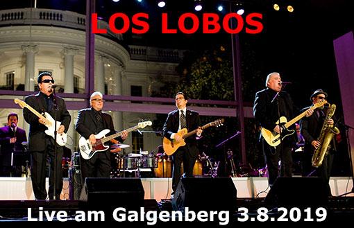 Los_LobosGalgi